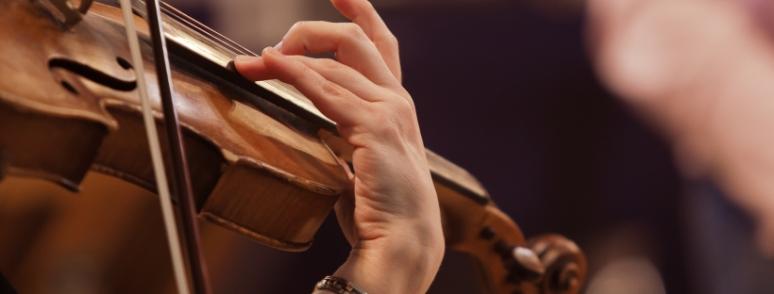 violon site bda